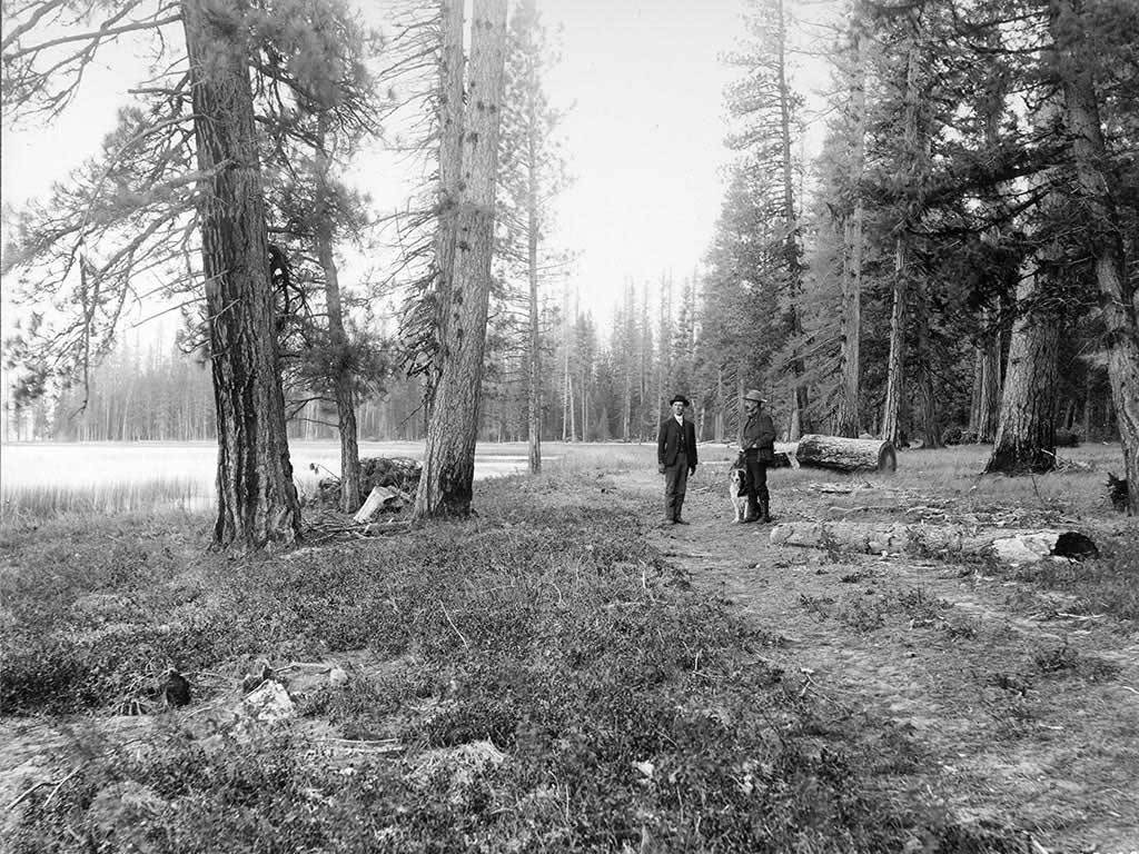 Employees tour forested timber for the Big Blackfoot Milling Company, c. 1908.