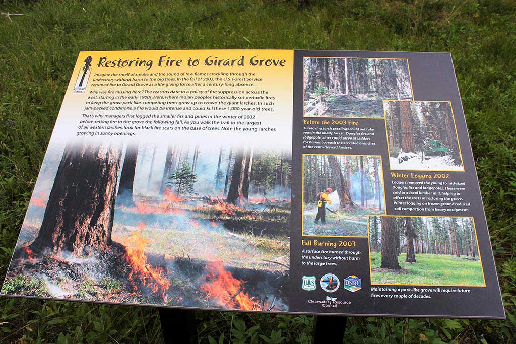 U.S. Forest Service signage on the restoration of the Girard Grove in 2003.
